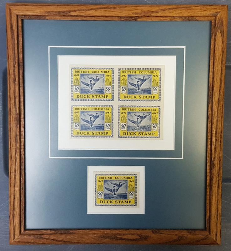 duck stamps, framed