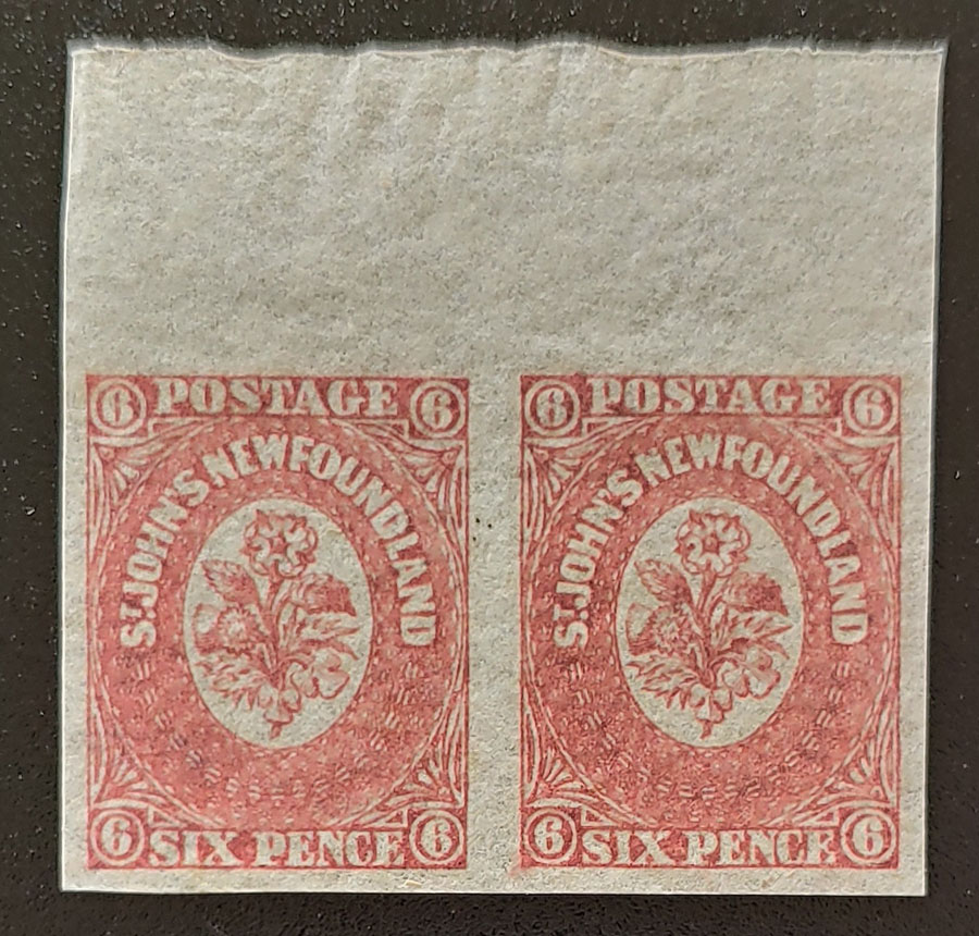 Newfoundland #20, 20i VFNH 6d Pair w/ & without Watermark $180