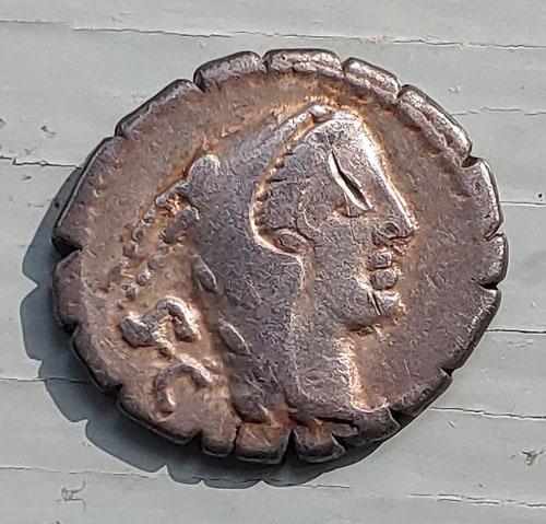Roman Republic 80 BC L. Procillus 3.77gm Silver Denarius w/ Juno Sospita, wearing a goat's skin headdress, with S C behind. test cut
